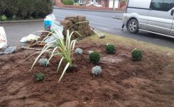 MDK Garden Services Front Lawn Feature 2